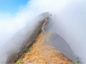 pesona gunung andong wisata magelang