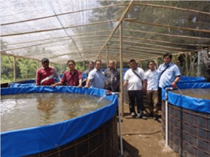 TOTAL AQUACULTURE