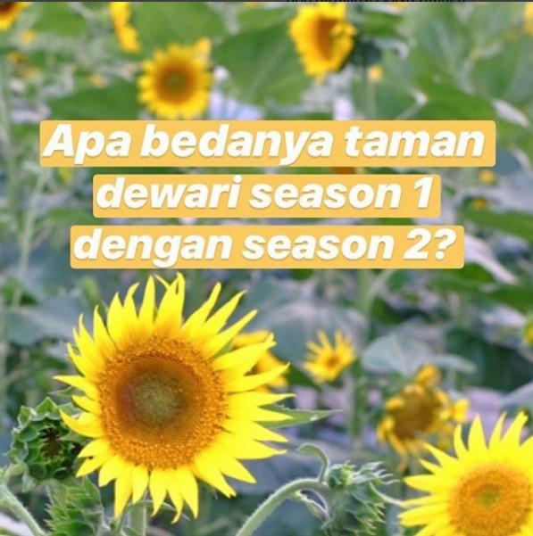 taman dewari season 2